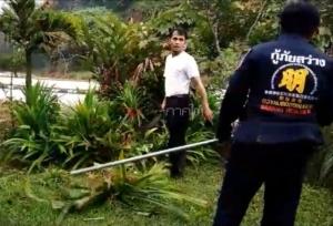 ชาวบ้านเบตงผงะ! งูหลามขดตัวข้างบ้านโร่แจ้งกู้ภัยจับปล่อยป่า