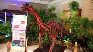ตื่นตา!อุทยานฯราชพฤกษ์ เปิดโลกดึกดำบรรพ์โชว์ไดโนเสาร์จำลอง นัดเสวนากู้ภัยถ้ำหลวง