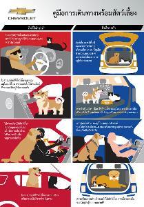 เปิดเทคนิค เดินทางกับหมา-แมว อย่างไรให้ปลอดภัย