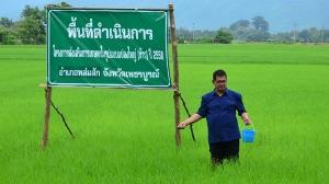 ก.เกษตรฯ ชี้เกษตรแปลงใหญ่ลดต้นทุนกว่า 3 พันล้าน พร้อมประกาศแปลงใหญ่ดีเด่นปี 61