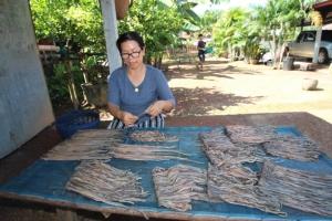 """ที่เดียวในไทย! ชาวนาหว้าจับไส้เดือนส่งออกรับเงินแสน """"จีน-ไต้หวัน"""" ซื้อไม่อั้น"""