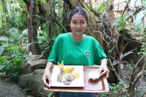 เกษียณสร้างสุข..อดีตผู้ว่าฯเปิดร้านสวนป่าตาการิมปิง ชูเมนูเด็ด-ชมพันธุ์ไม้หายาก(ชมคลิป)
