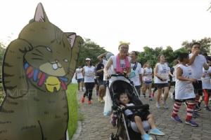 ทาสแมววิ่งเพื่อแมวจร ในกิจกรรม Kingdomoftigers Run Season 3