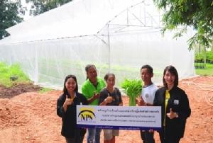 """NPS สนับสนุน """"โรงเรือนต้นแบบแหล่งเรียนรู้ผลิตพืชผักปลอดภัย"""""""