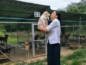 """""""บ้านหมา-แมว"""" ประชดหนัก!! """"เก็บตังค์ขึ้นทะเบียนสัตว์เลี้ยงเมื่อไหร่ จะปล่อยทิ้งให้หมด"""""""