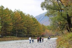 """""""คามิโคจิ"""" สวรรค์กลางป่า งามตรึงตราในอ้อมกอดเจแปนแอลป์"""