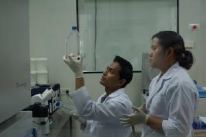 """แพทย์จุฬาฯ ลุยเฟสสอง """"ยาต้านมะเร็ง"""" จากภูมิคุ้มกัน พร้อมวิจัยเซลล์บำบัด-วัคซีนรักษามะเร็ง"""