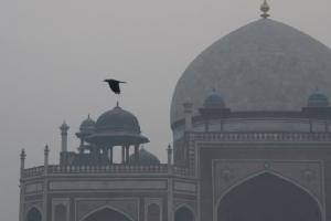 ค่ามลพิษใน 'นิวเดลี' พุ่งถึงขีดอันตราย หลังผ่านค่ำคืนเทศกาลดิวาลี