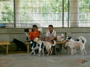 """พาชมบ้านใหม่ """"ศูนย์พักพิงสุนัข อุทัยธานี"""" หลังย้ายจากซอยชินเขต"""