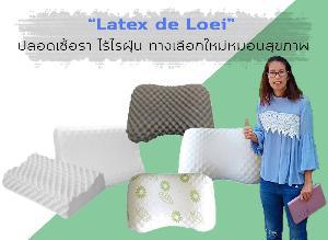 """""""Latex de Loei"""" หมอนยางพาราเกรดพรีเมียม เตรียมปั้นแบรนด์ใหม่บุกทั่วโลก"""