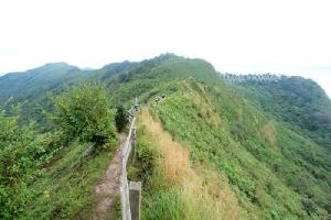 ภูชี้ดาว เดิมชาวบ้านเรียกขานกันว่าภูหัวโล้นตามลักษณะของยอดภูที่ดูโล่งเตียน