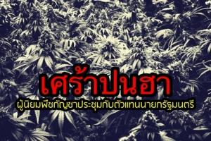 [In Clip] เศร้าปนฮา! กลุ่มผู้นิยมพืชกัญชาประชุมกับตัวแทนนายกรัฐมนตรี (คลิปเสียง)