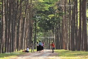 เผยผลสำรวจ ปี 2562 คนไทยเน้นเที่ยวใช้จ่ายอย่างมีสติ