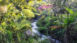 ลำธารป่าต้นน้ำห้วยน้ำกืนที่ปลอดสารเคมี ไหลเป็นสายน้ำคุณภาพไปสู่ชุมชนเบื้องล่าง