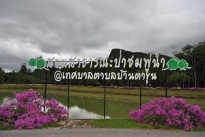 """สร้างแลนด์มาร์กแห่งใหม่บ้านตาขุน """"สวนป่าต้นชมพู่น้ำ"""" เชื่อมโยงท่องเที่ยว OTOP นวัตวิถี"""