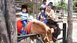 นักท่องเที่ยวจากทั่วสารทิศ เข้าไปชมความน่ารักของสัตว์ที่สวนสัตว์ขอนแก่นมากเป็นพิเศษ