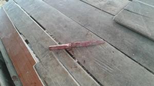 ฆ่าโหดหนุ่มก่อสร้างมีดแทงท้องก่อนผูกคอประจานต้นไม้หน้าบ้าน