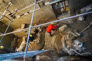 นักโบราณคดีขุดซากม้าที่พบในชานเมืองปอมเปอี (Cesare Abbate/ANSA Via AP)