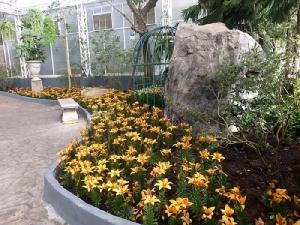 """""""เพ ลา เพลิน"""" ชวนท่องอาณาจักรดอกไม้เมืองหนาว ใหญ่ที่สุดในอีสาน"""