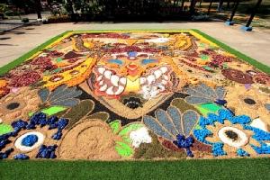พรมดอกไม้หน้ากากผีตาโขน ไฮไลท์งานศิลปะ สายหมอก และดอกไม้เมืองเลย