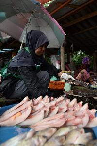 จากการวิจัยพบว่า คนที่กินอาหาร Mediteranean ซึ่งประกอบด้วยผลไม้ ผัก และอาหารประเภทเมล็ดข้าว ปลา และน้ำมันมะกอกมีโอกาสเป็นโรคสมองเสื่อมน้อยกว่าคนที่บริโภคเนื้อ นม ไข่ ถึง 40% (Madaree TOHLALA / AFP)