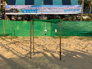 ดร.ธรณ์ บินด่วนพังงาเพื่อไข่เต่ามะเฟือง ชวนคนไทยดูถ่ายทอดสด-รอวันฟักเป็นตัว