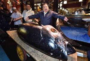 คิโยชิ คิมูระ ประธานเครือภัตตาคารซูชิซันไม อวดโฉมปลาทูน่าครีบน้ำเงินตัวเขื่อง 278 กิโลกรัมที่เขาประมูลมาได้ด้วยสนนราคาถึง 333.6 ล้านเยน หรือประมาณ 98.3 ล้านบาท วันนี้ (5 ม.ค.)