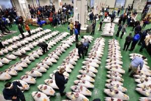 In Pics: เจ้าของร้านซูชิญี่ปุ่นทุบสถิติประมูลปลาทูน่ายักษ์เกือบ '100 ล้านบาท'