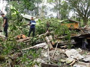 ทหารนาวิกโยธิน กองทัพเรือลงช่วยชาวบ้านในบาเจาะ ต้นไม้ล้มทับบ้านหลายหลัง