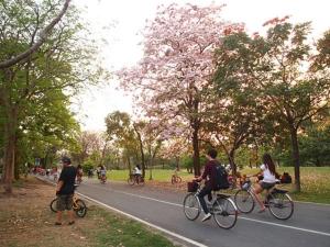 ปั่นจักรยานออกกำลังกายในสวนรถไฟ
