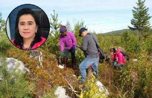 """เตือน!! อย่าเชื่อคำชวนไปทำงานเก็บผลไม้ป่า """"สวีเดน-ฟินแลนด์"""" เหตุยังไม่ถึงฤดูกาลสมัคร"""