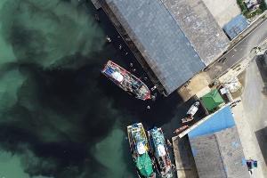 กลุ่มอนุรักษ์ทะเล! เผยภาพปล่อยน้ำเน่าเสียลงปากน้ำปราณ หลังบ่อบำบัดราคา 30 ล้านจุไม่พอ