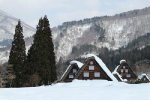 บ้านกัสโซซึคุริ  ภูมิปัญญาการสร้างบ้านของชาวชิราคาวาโกะ