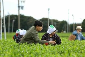 โออิชิ โกลด์ ชวนสัมผัสตำนานชาข้าวคั่วญี่ปุ่น พิสูจน์สุดยอดชาเขียวพรีเมียมเพื่อสุขภาพ รางวัลจักรพรรดิญี่ปุ่น