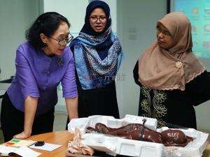 """เจ๋ง! ม.อ.ปัตตานี ผลิตหุ่น CPR ช่วยชีวิตผู้หญิง และตรวจมะเร็งเต้านมสำเร็จ ในชื่อ """"ฟาตีลา-อารียา"""""""
