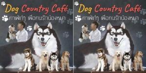 Dog Country Café คาเฟ่เก๋ๆ เพื่อคนรักน้องหมา
