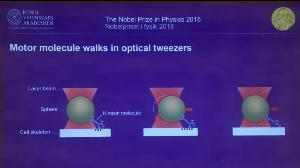 คณะกรรมการรางวัลโนเบลอธิบายถึงหนึ่งในผลงานที่ได้รับรางวัลโนเบลฟิสิกส์ 2018 ซึ่งเป็นเทคโนโลยีแสงที่เสมือนคีมใช้หนีบจับอนุภาคขนาดเล็กระดับ micron ซึ่งรวมถึงเซลล์ของสิ่งมีชีวิต เชื้อโรคและไวรัสให้อยู่นิ่งๆ โดยไม่ทำอันตรายใดๆ หรือเคลื่อนย้ายมันไป ณ ตำแหน่งต่างๆ เพื่อให้นักวิทยาศาสตร์สามารถศึกษาธรรมชาติของมันได้อย่างใกล้ชิดเป็นเวลานานๆ