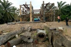 เผยผู้กว้างขวาง-ตร.เจ้าของบ้าน 2 หลัง สร้างจากไม้เถื่อนที่สุราษฎร์ฯ
