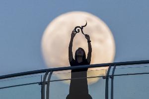 ภาพถ่าย Super Full Moon ในรูปแบบ Moon Illusion ของคืนวันที่ 14 พฤศจิกายน 2559  (ภาพโดย : ธนกฤต  สันติคุณาภรต์ / Camera : Nikon D800 / Lens : Takahashi TOA 150 / Focal length : 1100 mm. / Aperture : f/7.3 / ISO : 1000 / Exposure : 1/1000sec)
