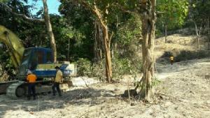 หวั่นเขาแหลมสิงห์ จันทบุรี ถูกบุกรุก หลังพบผู้มีอิทธิพลนำรถแบ็กโฮเข้าแผ้วถางป่า