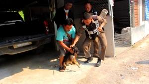 ตำรวจลุยป่าอ้อยไปช่วยน้องหมาหัวติดในโหลใส่ขนม นาน 3 วัน