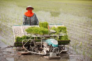 """""""ไททา"""" แนะพรรคการเมือง ชู 3 นโยบายภาคเกษตร ใช้สารเคมีแบบปลอดภัย"""