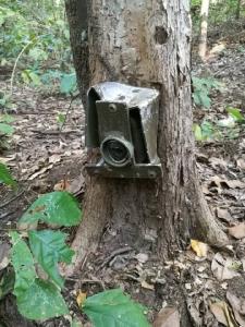 รับไม่ได้! เผยภาพซากอุปกรณ์ช่างภาพ ทิ้งเกลื่อนหลังเก็บภาพสัตว์ภายในป่า