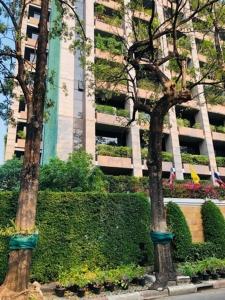 Green Wall / Green Roof ถึงจะช่วยกรองฝุ่น PM 2.5 ทำให้อากาศบริสุทธิ์มากขึ้นในระยะยาว