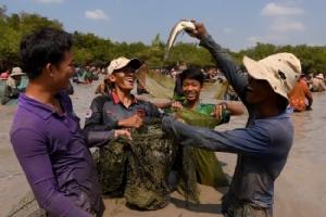 ชาวเขมรนับร้อยแห่ร่วมงานจับปลาประจำปี โอดปลามีน้อยแถมตัวเล็กลง