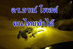 """""""ดร.ธรณ์"""" โพสต์คนไทยทำได้ เปิดประวัติศาสตร์หลังลูกเต่ามะเฟืองรังแรกโผล่หน้ามาดูโลก"""