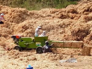 เกษตรกรอัดฟางข้าวเพื่อใช้นำไปใช้ประโยชน์แทนการเผาทิ้ง