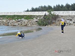 """สั่งห้ามลงเล่นน้ำ! บริเวณชายหาดนราทัศน์ หลังพบ """"จระเข้"""" ว่ายโผล่เหนือน้ำใกล้ฝั่ง"""