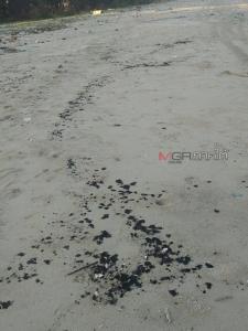 พบก้อนน้ำมันลึกลับเกลื่อนหาดหัวไทรนครศรีฯ ชาวบ้านร้องขอ จนท.ตรวจสอบ