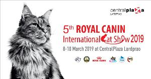 """แมวสวยหลายสายพันธุ์ดีกรีรางวัลระดับโลกเดินสายเข้าประกวดในประเทศไทย ในงาน """"5th Royal Canin International Cat Show 2019"""""""